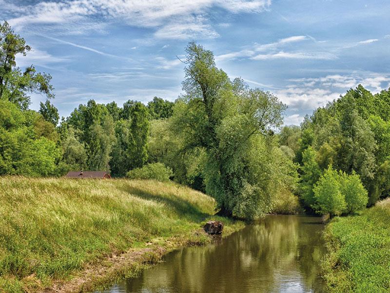 ``Neuburg am Rhein``